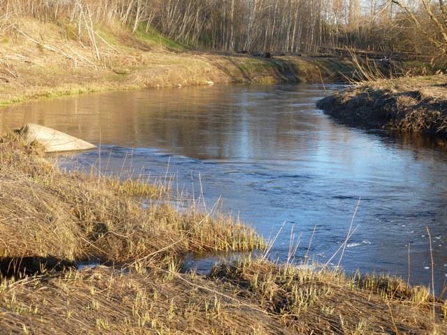 рыбалка на реке коваши лен обл